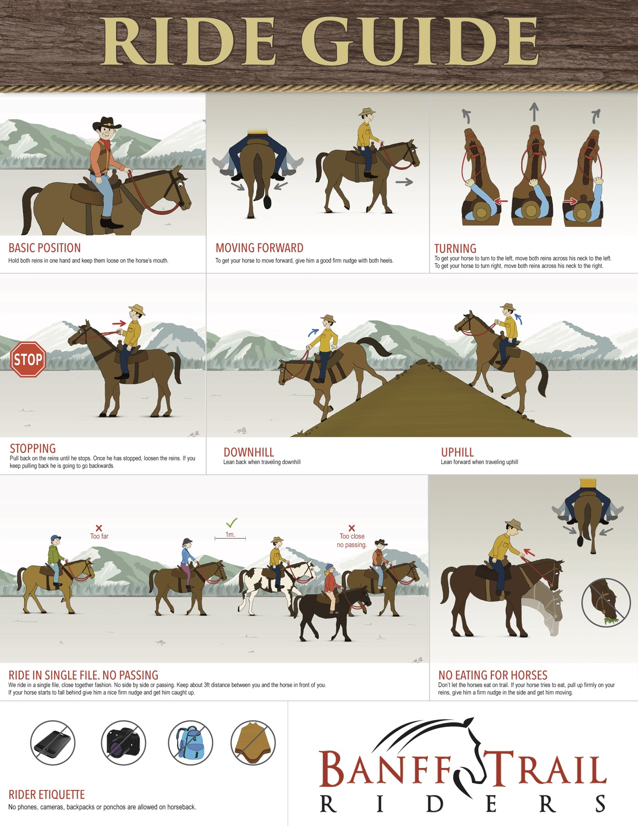How to Ride a Horse (the Basics) images