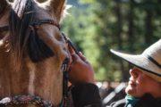 Saddle up at Halfway Lodge