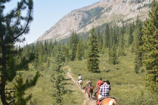 Trail up the Valley on the Cascade Valley Backcountry Tent Trip in Banff, Canadian Rockies