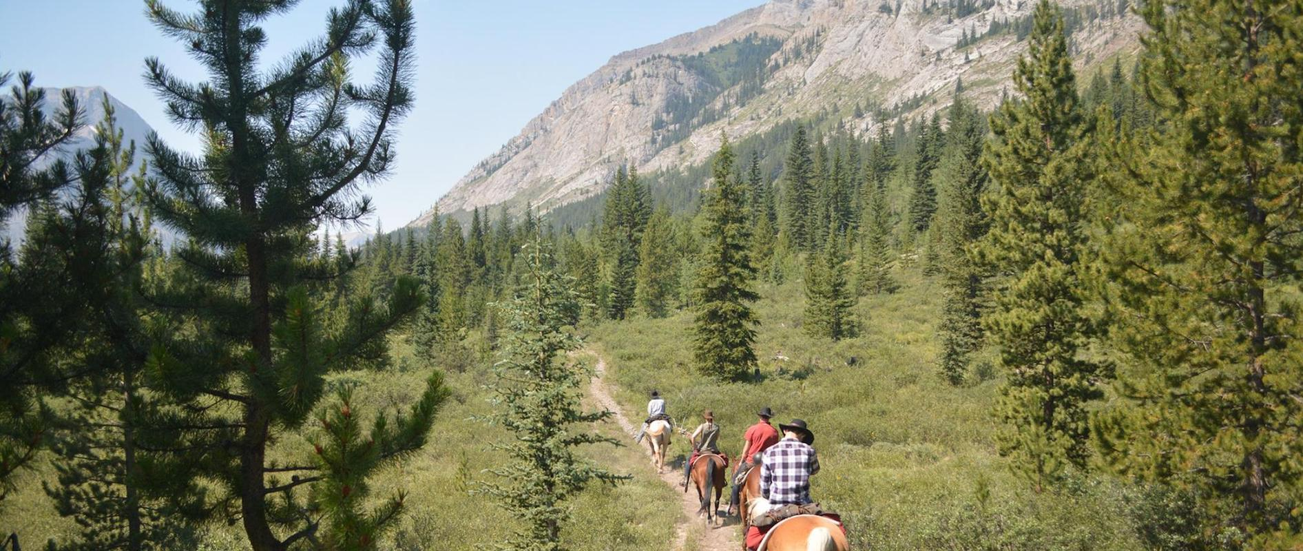 Horseback Riding Pack Trips in the Canadian Rockies