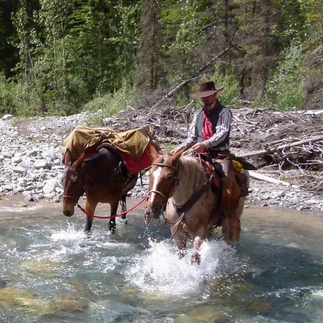 Michael Trail Guide with Banff Trail Riders