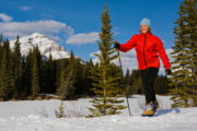 Cross Country Ski to Sundance Lodge in Banff, Canadian Rockies