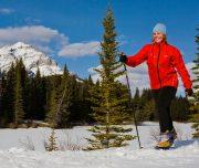 Cross Country Ski to Sundance Lodge in Banff, Canadian Rockies