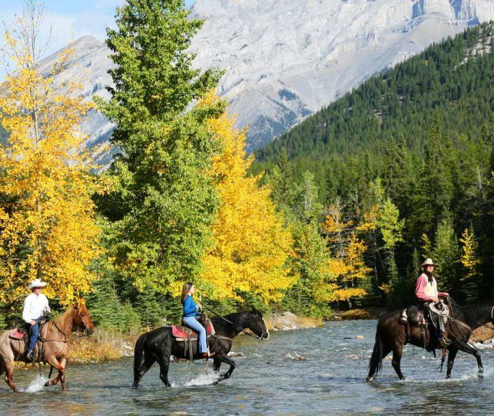 Cross the Spray River on the Sulphur Mountain Horseback Ride in Banff