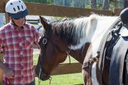Meet your friendly horse before your horseback ride with Banff Trail Riders in the Canadian Rockies