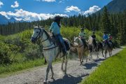 Take a Bow River horseback ride in Banff with Banff Trail Riders in the Canadian Rockies