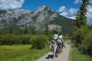 Take a guided one hour Bow River horseback ride with Banff Trail Riders in the Canadian Rockies