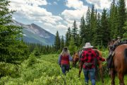 Approaching Elk Summit on the Stoney Creek Backcountry Tent Trip with Banff Trail Riders in the Canadian Rockies