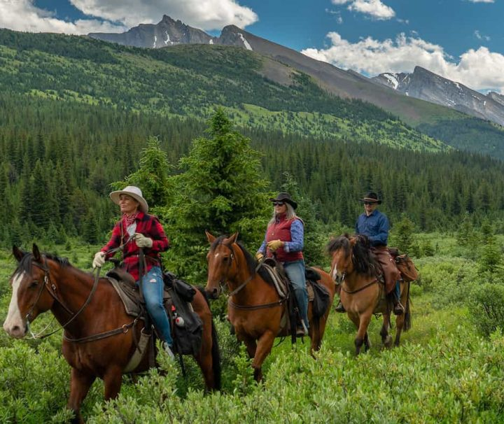 Elk Summit on the Stoney Creek Tent Trip with Banff Trail Riders in the Canadian Rockies