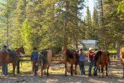 Stoney Corral at Stoney Camp on the Stoney Creek Backcountry Tent Trip with Banff Trail Riders in the Canadian Rockie