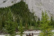 Day Ride from Stoney Camp on the Stoney Creek Backcountry Tent Trip with Banff Trail Riders in the Canadian Rockies