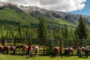 Elk Corral on the Cascade Valley Backcountry Tent Trip with Banff Trail Riders in the Canadian Rockies