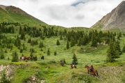 Ride through the Backcountry from Flints Camp on the Cascade Valley Backcountry Tent Trip with Banff Trail Riders in the Canadian Rockies