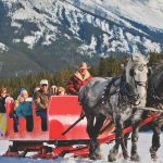 Take a Banff winter sleigh ride through the mountain meadows with Banff Trail Riders