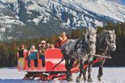 Take a Banff winter sleigh ride through the mountain meadows with Banff Trail Riders
