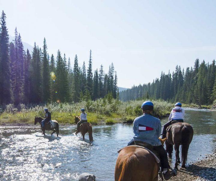 Ride through the Spray River on the Spray River Horseback Ride