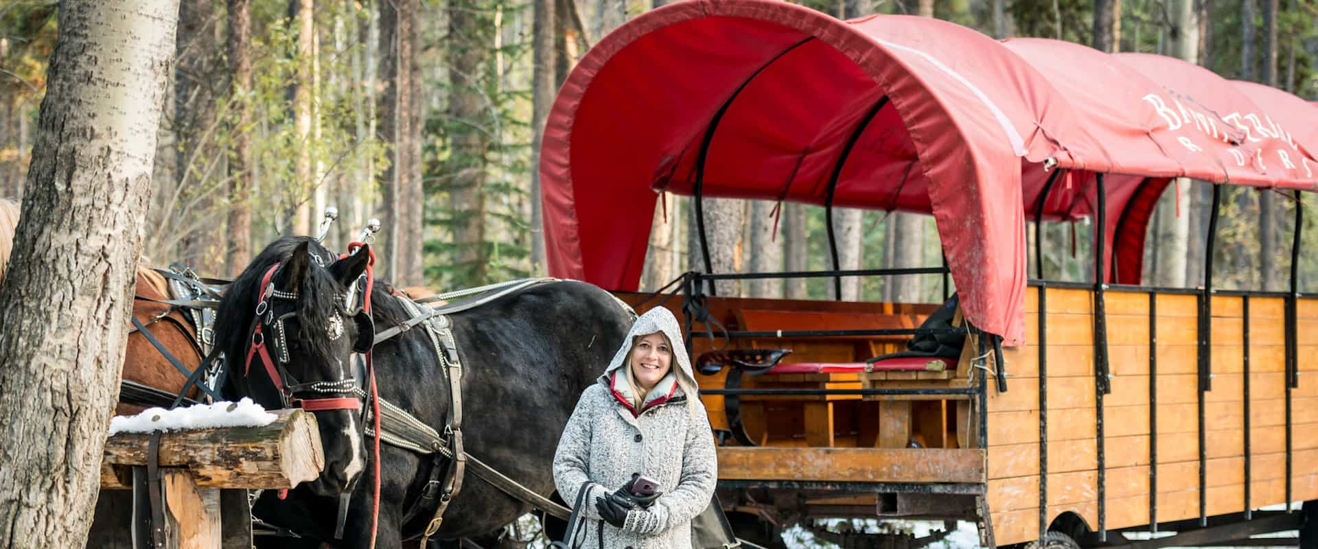 Take a free holiday wagon ride in Banff
