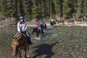 Your small group horseback ride will cross through the Spray River
