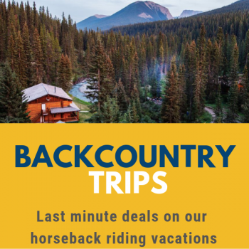 backcountry deals