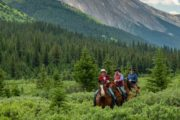 Experience the thrill of riding in the backcountry with Banff Trail Riders