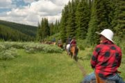 Ride along picturesque forest trails in Banff National Park on a backcountry tent trip