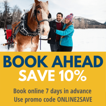 Winter ONLINE2SAVE promo