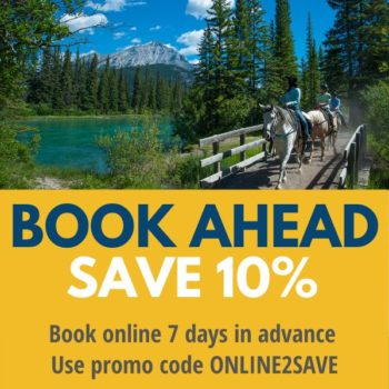 Summer ONLINE2SAVE promo